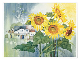 Poster Premium  Rays of sun flowers - Franz Heigl