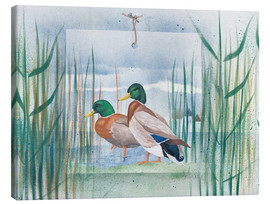 Stampa su tela  Pair of wild ducks - Franz Heigl