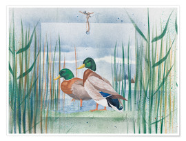 Poster Premium  Pair of wild ducks - Franz Heigl