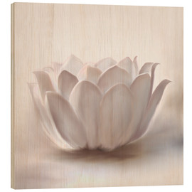 Legno  White Lotus - Christine Ganz
