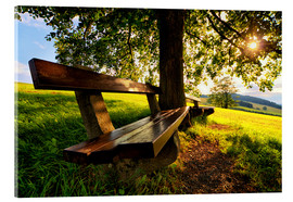 Stampa su vetro acrilico  Relaxing Under Trees - Stefan Becker