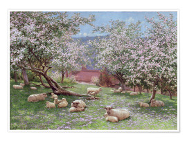 Poster Premium  Appleblossom - William Biscombe Gardner