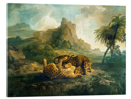 Stampa su vetro acrilico  Leopards at Play - George Stubbs