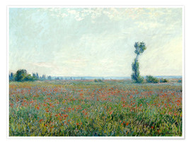 Poster Premium  Field with poppies - Claude Monet