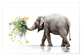 Poster Premium Elephant with Flower