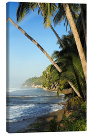 Stampa su tela  Palm Fringed Tropical Paradise Coastline - Paul Kennedy