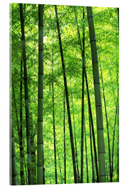 Keren Su - Tree trunks in a bamboo forest