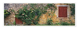 Poster  Climbing roses cover an old stone wall - Ric Ergenbright