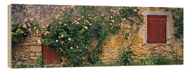 Legno  Climbing roses cover an old stone wall - Ric Ergenbright