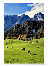 Poster  Alpine views with forest and pasture - Ric Ergenbright