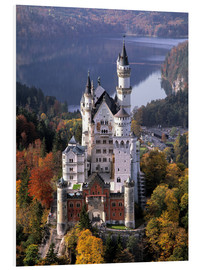 Forex  Neuschwanstein with Alpsee - Ric Ergenbright