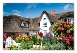 Poster Premium Amrum - thatched house with flower garden