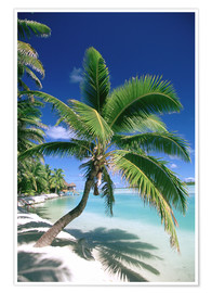 Poster  Aitutaki on Cook islands - Douglas Peebles