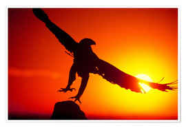 Poster Premium  A golden eagle flies at dawn - Dave Welling