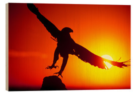 Stampa su legno  A golden eagle flies at dawn - Dave Welling