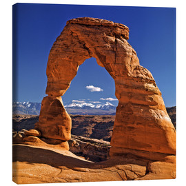 Tela  The Delicate Arch at Arches National Park in Utah - Ric Ergenbright