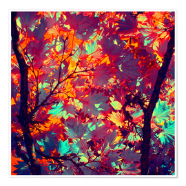 Poster Premium autumn tree II