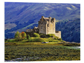 Schiuma dura  Eilean Donan Castle in the Scottish Highland - Ric Ergenbright