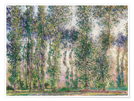 Poster Premium Poplars at Giverny
