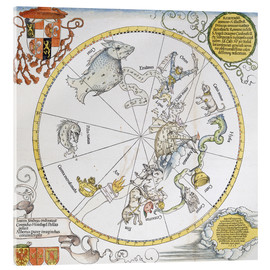 Stampa su vetro acrilico  Map of the Southern Sky. 1515 - Albrecht Dürer