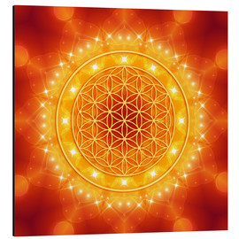 Alluminio Dibond  Flower of Life - Golden LightEnergy - Dolphins DreamDesign
