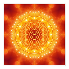 Poster  Flower of Life - Golden LightEnergy - Dolphins DreamDesign