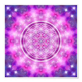 Poster  Flower of Life - Love Essence - Dolphins DreamDesign