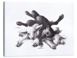 Stampa su tela  Three Sheep - Ball Of Wood - Stefan Kahlhammer