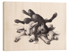 Stampa su legno  Three Sheep - Ball Of Wood - Stefan Kahlhammer