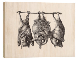 Stampa su legno  Vampire - Owl and Two Bats - Stefan Kahlhammer