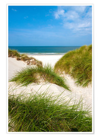 Poster Premium Seascape with dunes and beach grass