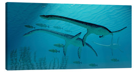Stampa su tela  Three Plesiosaurus dinosaurs migrate with a school of fish. - Corey Ford