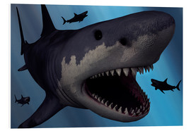 Stampa su schiuma dura  A Megalodon shark from the Cenozoic Era - Mark Stevenson