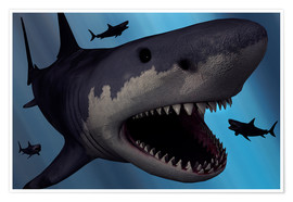 Poster Premium  A Megalodon shark from the Cenozoic Era - Mark Stevenson