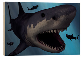 Legno  A Megalodon shark from the Cenozoic Era - Mark Stevenson