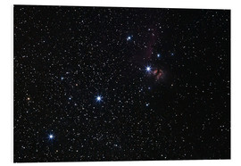 Stampa su PVC  Nebula in Orion's belt - Luis Argerich