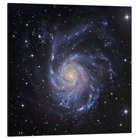 Stampa su alluminio  M101, The Pinwheel Galaxy in Ursa Major - Robert Gendler