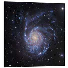 Stampa su PVC  M101, The Pinwheel Galaxy in Ursa Major - Robert Gendler