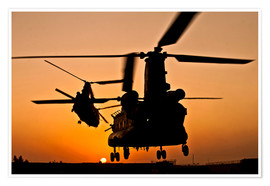 Poster Premium  Two Royal Air Force CH-47 Chinooks