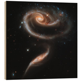 Stampa su legno  Arp 273 interacting galaxies in Andromeda.