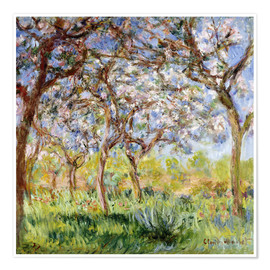 Poster Premium  Spring at Giverny - Claude Monet