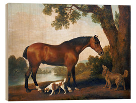 Stampa su legno  Horse and two dogs - George Stubbs