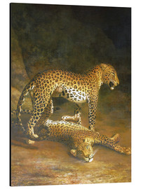 Stampa su alluminio  Two Leopards lying in the Exeter Exchange - Jacques Laurent Agasse