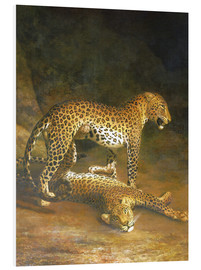 Stampa su schiuma dura  Two Leopards lying in the Exeter Exchange - Jacques Laurent Agasse