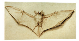 Vetro acrilico  Bat with spread wings - Hans Holbein d.J.