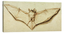 Stampa su tela  Bat with spread wings - Hans Holbein d.J.