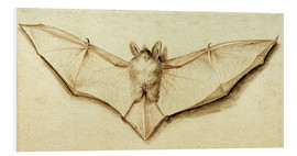 Stampa su PVC  Bat with spread wings - Hans Holbein d.J.