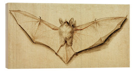 Stampa su legno  Bat with spread wings - Hans Holbein d.J.