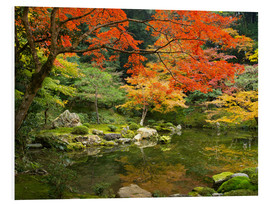 Stampa su PVC  Japanese garden in autumn with red maple tree - Jan Christopher Becke