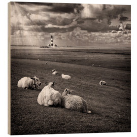 Stampa su legno  Talking Sheep - Carsten Meyerdierks
